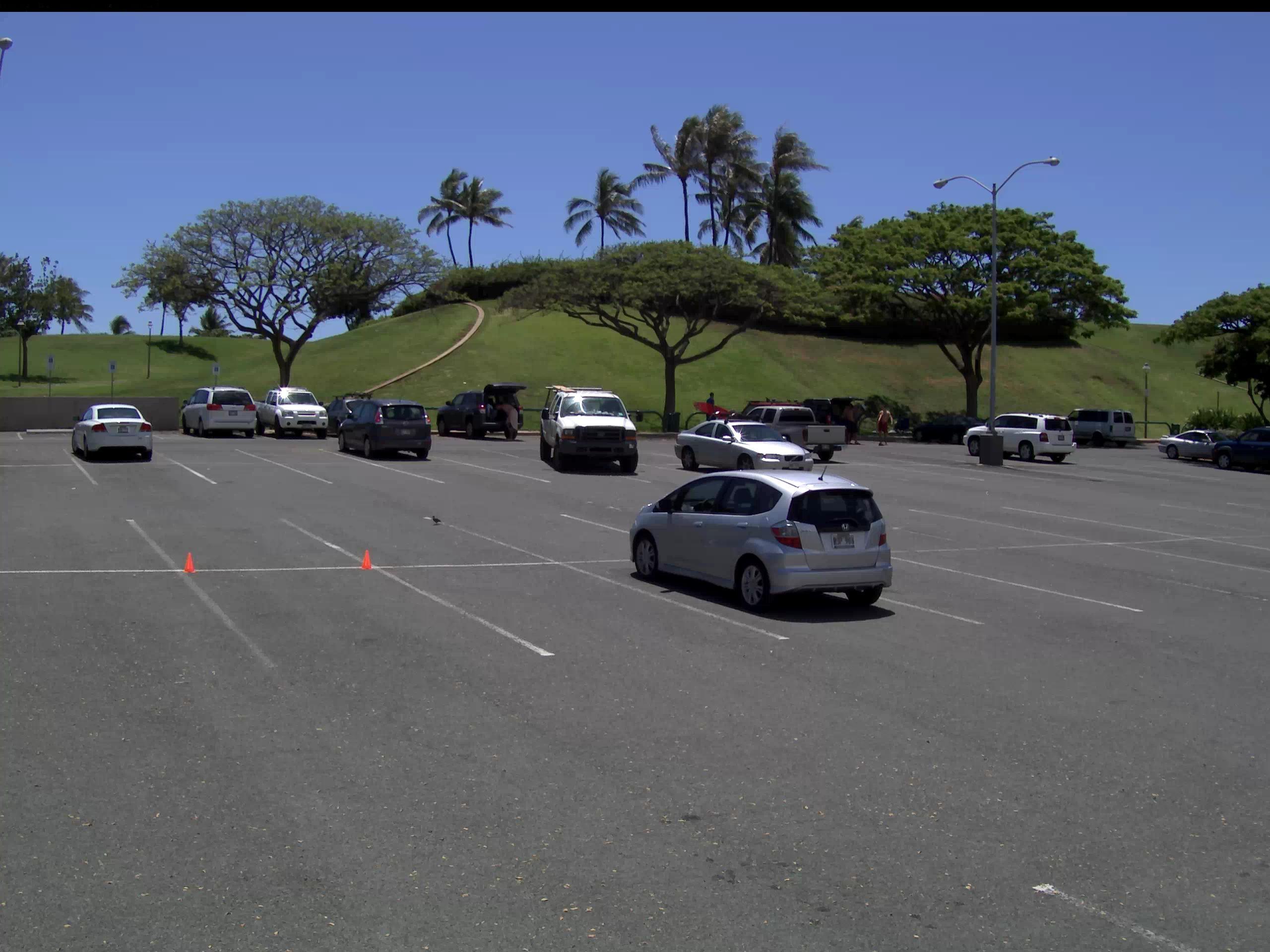 Parking Lot Shootout Light Pole Wiring Diagram