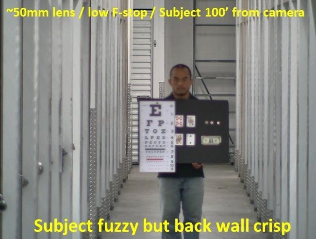 fuzzy far