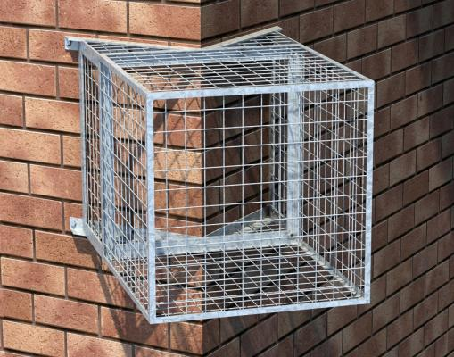 Image result for cages ptz