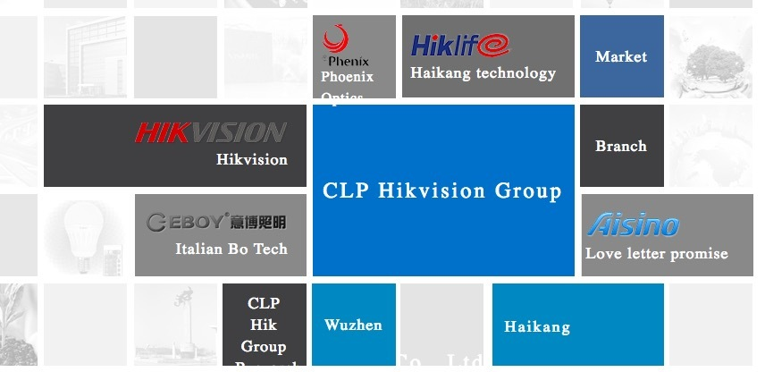 Hikvision Chinese Government Owner CETHIK