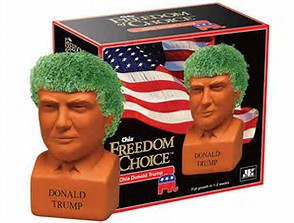 Image result for chia pet trump